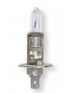 Lâmpada H1 12V 55W